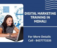 Digital Marketing Training in Mohali.jpg